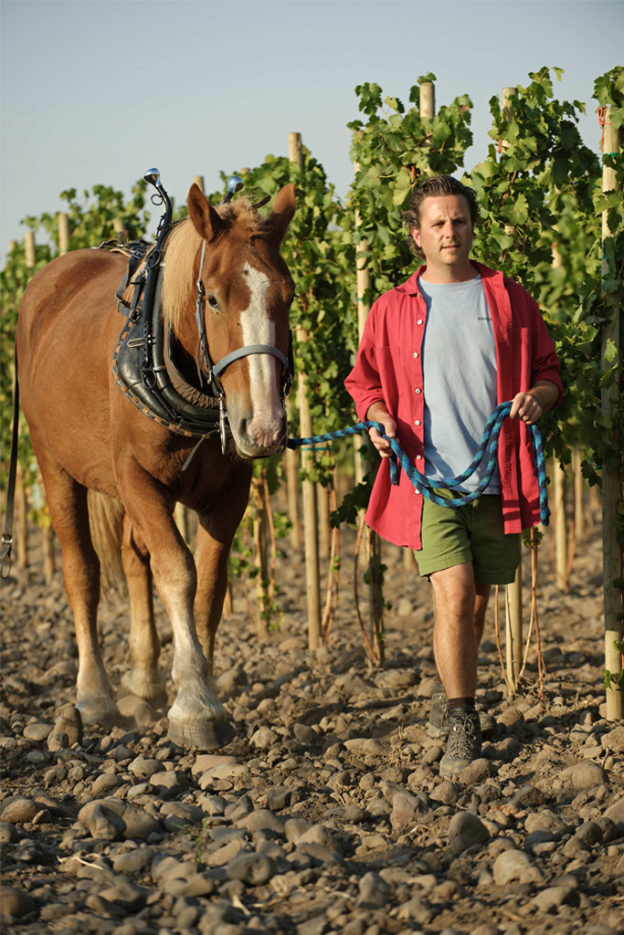 Cayuse vineyards press for Cayuse vineyards