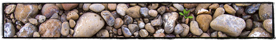 The river stones of Cayuse Vineyards